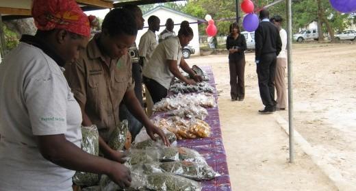 Choma Market